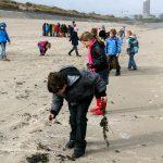 Simon de strandjutter | Vloedlijnonderzoek