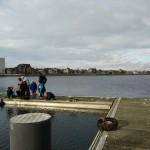 Onder de spiegel van de Spuikom | Wateronderzoek